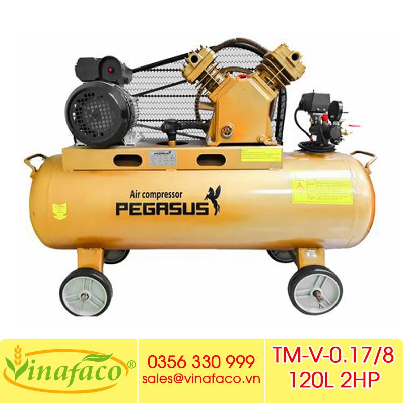 Máy Nén Khí Pegasus TM-V-0.17/8 120L