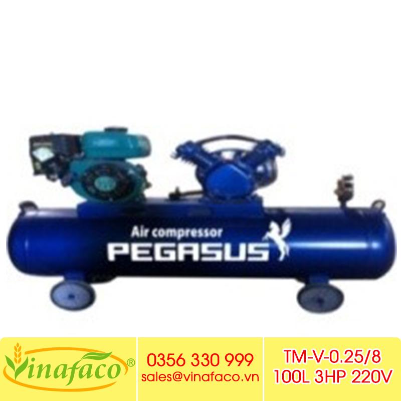 Máy Nén Khí PISTON Đầu Nổ Xăng Pegasus TM-V-0.25/8-100L
